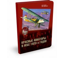 КРАСНЫЕ АВИАТОРЫ В НЕБЕ 1920-Х ГОДОВ | В. Конев, Н. Зиновьев